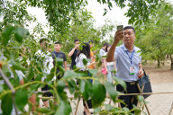 记者围观乐陵的生态旅游经典.jpg