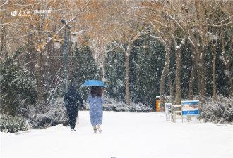 雪中漫步在公园小路,一把雨伞,两份情怀。(大众网欧博娱乐・海报新闻 记者 赵凤瑞 摄影报道)