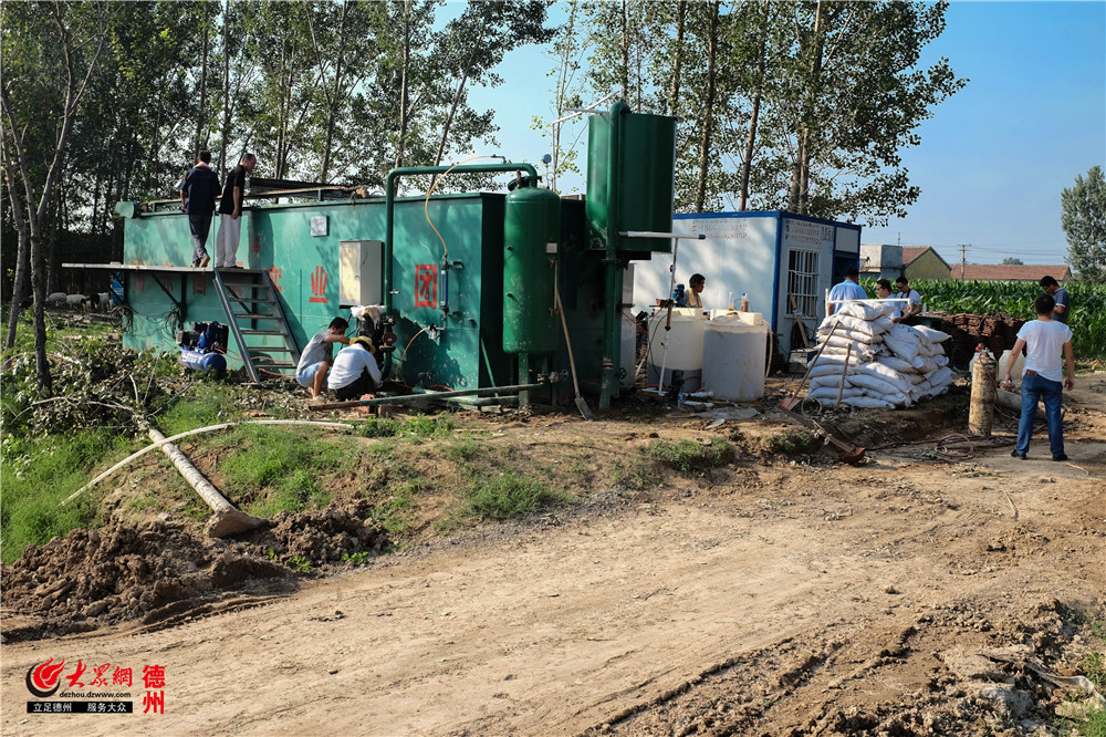 齐河养殖大村西魏将建环保生态湿地